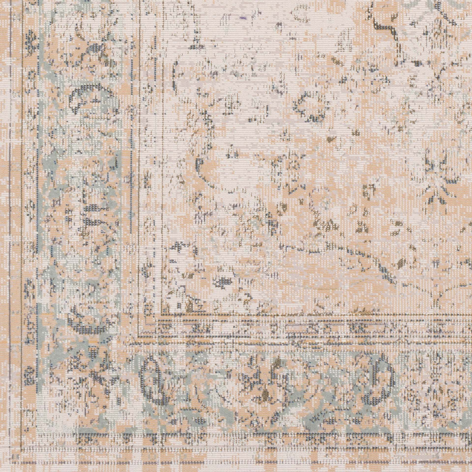 Traditional area rug with faded washed coloring in neutral tones - Detailed Shot