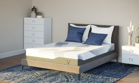 "VERITAS Collection VF1000 10"" Firm Mattresses"