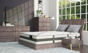 "VERITAS VH1000 12"" Plush Hybrid Mattresses"