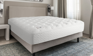 "Shifman Special Edition 13.5"" Double-Sided Mattresses"