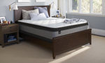 """Sealy Essentials™ Beaming 13"""" Pillow Top Plush Mattresses"""