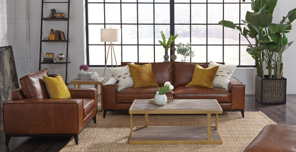Brown Sofa and Chair Set