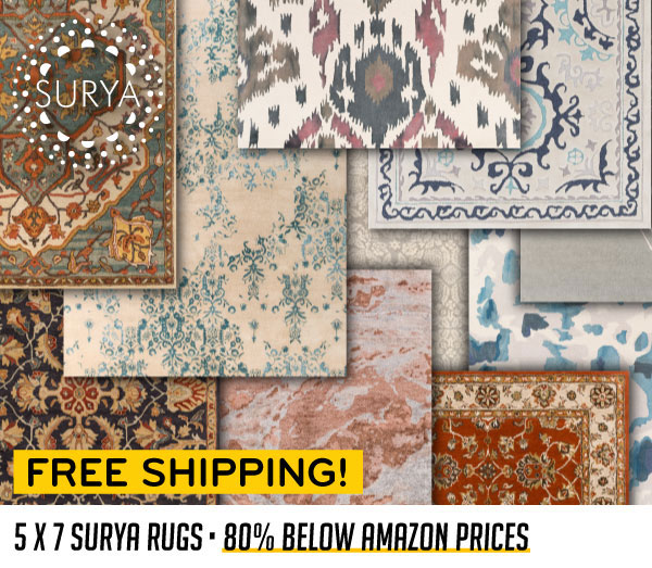 80% Below Amazon Prices 5x7 Rugs Free Shipping!